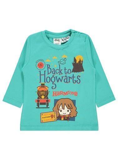 Harry Potter Sweatshirt Renkli